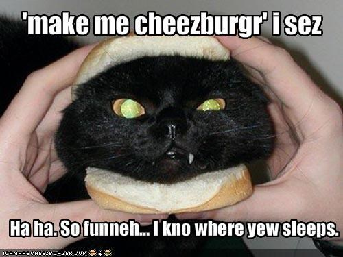 Cheezburger Image 871627008