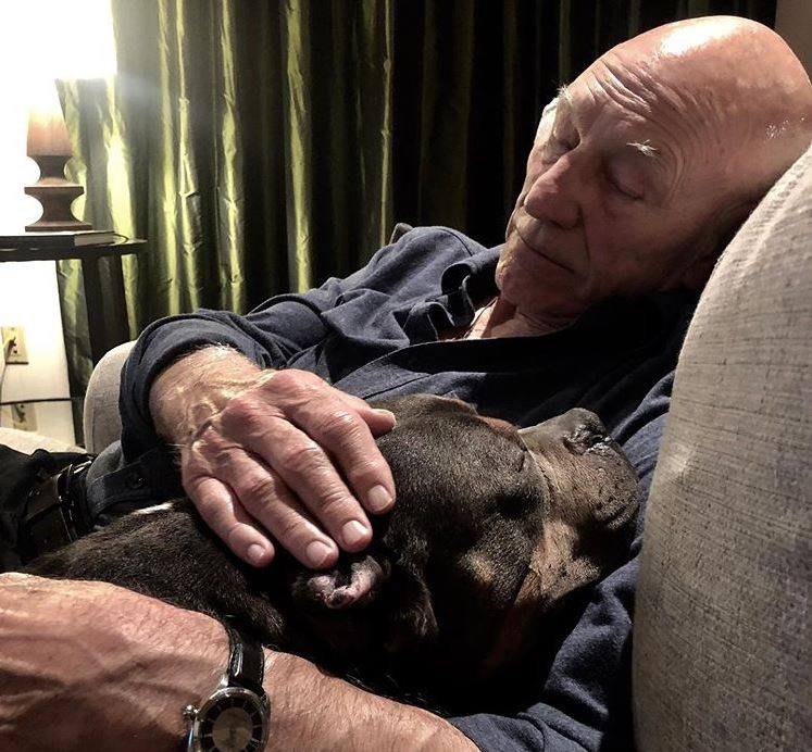 lenny rescue rip pit bull