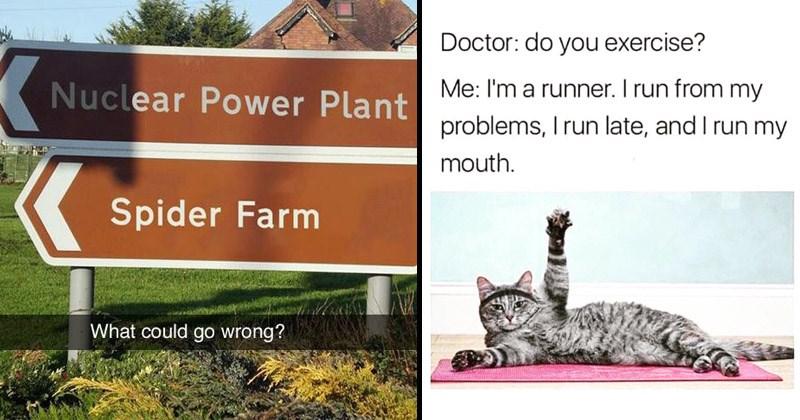 31 Humorous Memes That Are Dumb Yet Still Entertaining