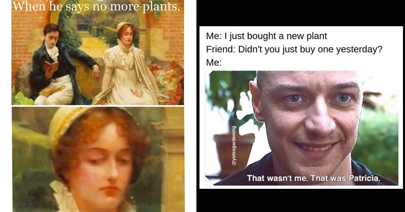 15 Silly Plant Memes For The Aspiring Botanists