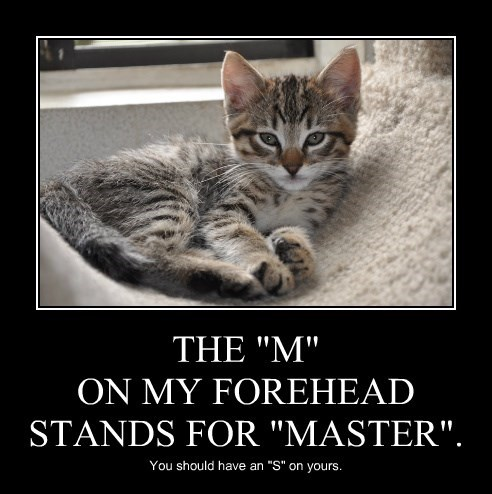"THE ""M"" ON MY FOREHEAD STANDS FOR ""MASTER""."