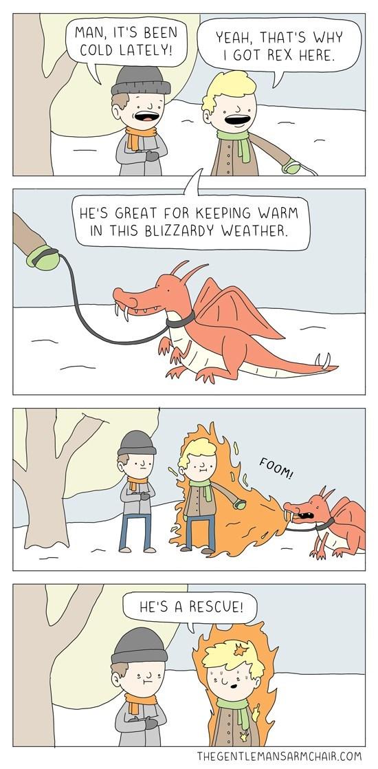 dragons winter web comics rescue
