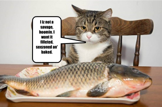I iz not a savage, hoomin. I want it filleted, seezoned an' baked.