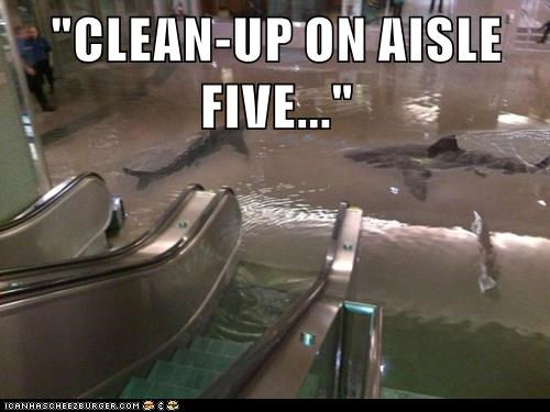 """CLEAN-UP ON AISLE FIVE..."""
