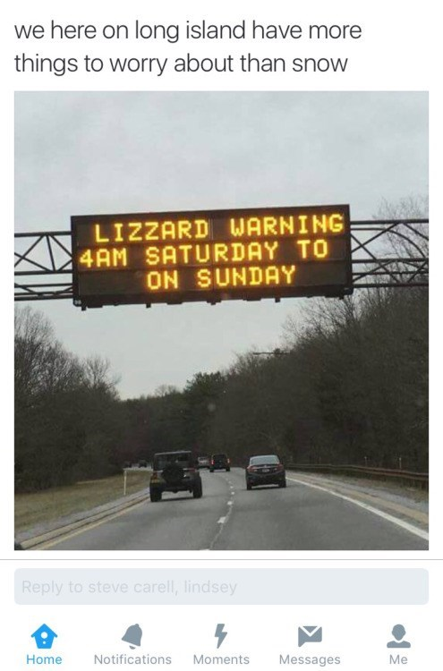 funny animal image of sign of blizzard warning misspelled to lizard