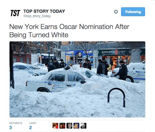 funny memes new york white oscar nomination