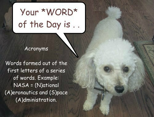 Nugget's WORD of the DAY is ACRONYMS