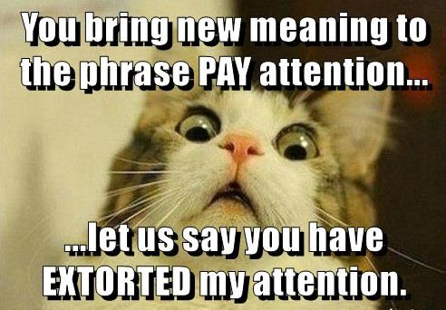 You bring new meaning to the phrase PAY attention...  ...let us say you have EXTORTED my attention.