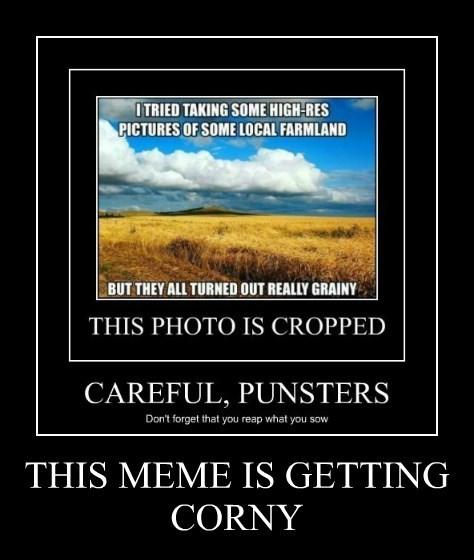 THIS MEME IS GETTING CORNY