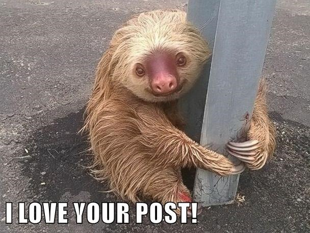 I LOVE YOUR POST!