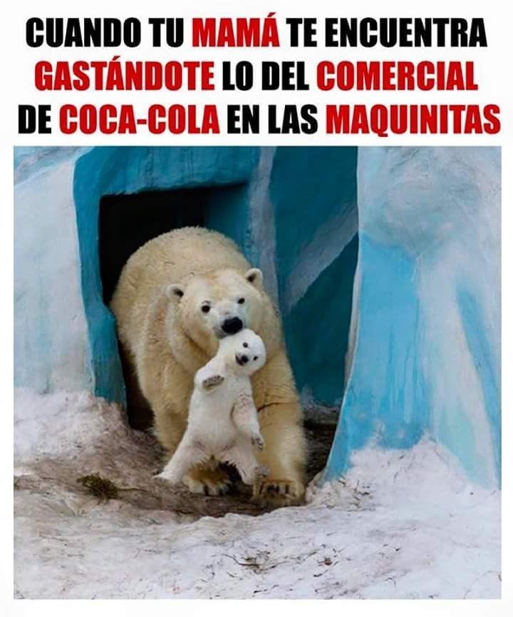 mama oso