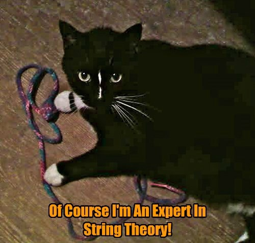Zazzy Helps Sheldon Cooper With His Work.