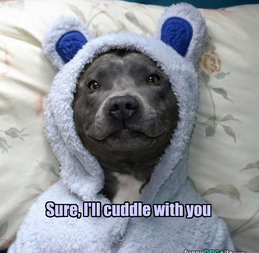 Sure, I'll cuddle with you