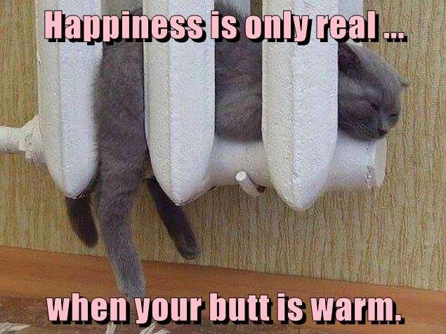 Happiness is only real ...  when your butt is warm.