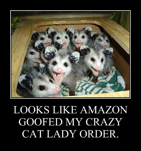 LOOKS LIKE AMAZON GOOFED MY CRAZY CAT LADY ORDER.