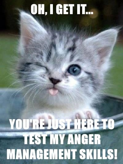 OH, I GET IT...  YOU'RE JUST HERE TO TEST MY ANGER MANAGEMENT SKILLS!