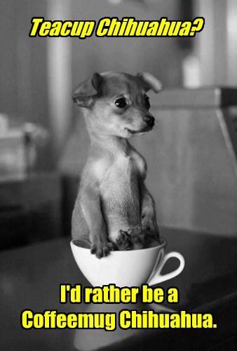 coffee - 8746619136