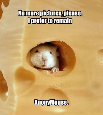 Mouse of Mystery.