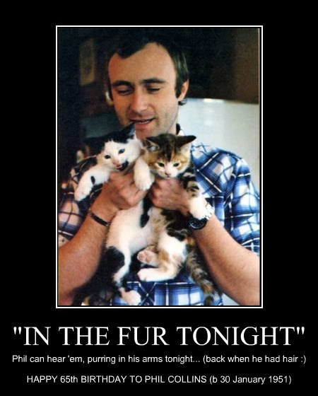 """IN THE FUR TONIGHT"""