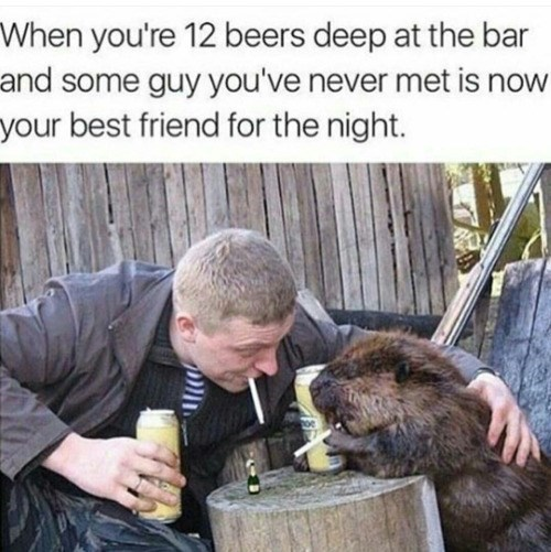 funny animal image of man having a drink with a beaver