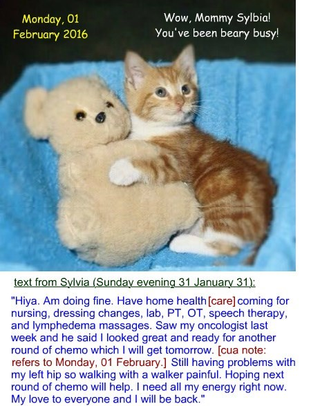 Purring along: Sylvia update Monday, 01 February 2016
