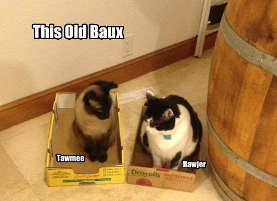 This Old Baux