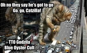 Oh no they say he's got to go    Go, go, Catzilla!