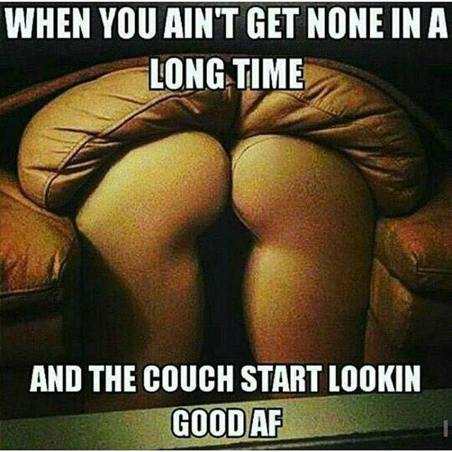 that looks naughty,couch