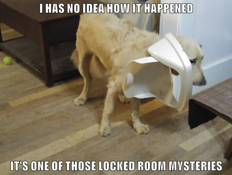 I HAS NO IDEA HOW IT HAPPENED IT'S ONE OF THOSE LOCKED ROOM MYSTERIES