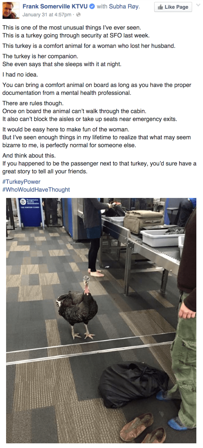 funny facebook image traveling with a comfort turkey