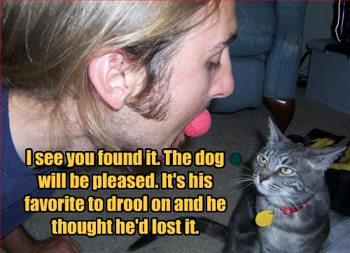 cat,caption,dogs,drool,found,pleased,favorite