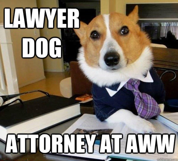 attorney aww caption dogs lawyer law - 8747990784