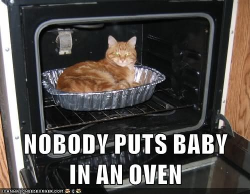 cat,baby,puts,nobody,dirty dancing,caption,quote,oven