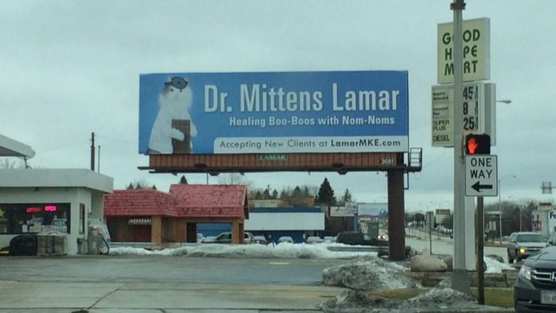 funny memes dr mittens lamar billboard