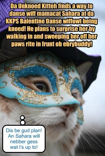 Da Unknoed Kitteh plans to go to da KKPS Balentine Danse!
