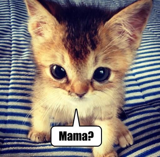 Mama?