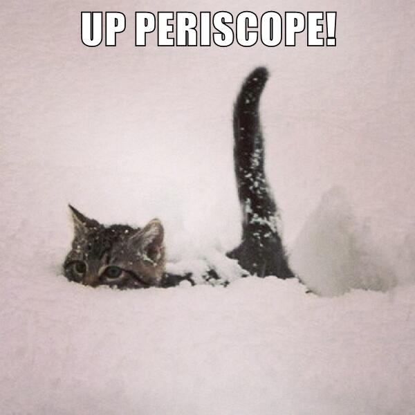 UP PERISCOPE!