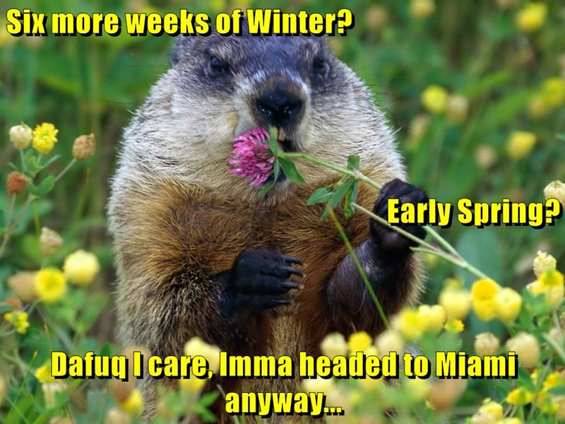 Six more weeks of Winter? Early Spring? Dafuq I care, Imma headed to Miami anyway...