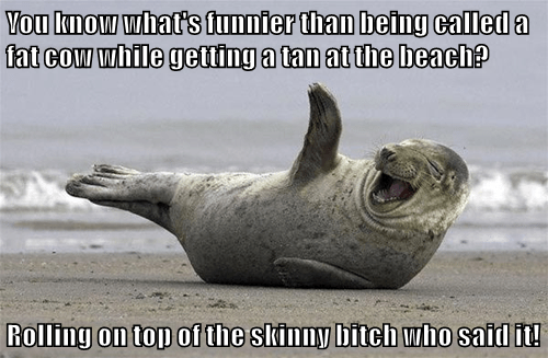 You know what's funnier than being called a fat cow while getting a tan at the beach?  Rolling on top of the skinny bitch who said it!