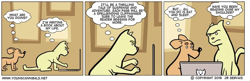 web comics cats What Happens Next? Will He Get up and Eat or Sleep More?