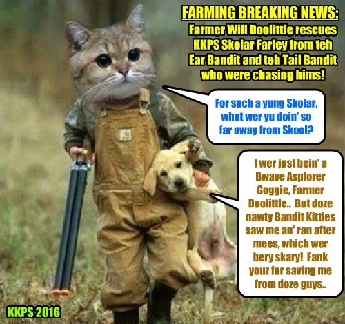 FARMING BREAKING NEWS: The Runamuck Farm which is situated kittie-korner from well known Kuppykakes Preppy Skool was the scene of a dramatic rescue today!