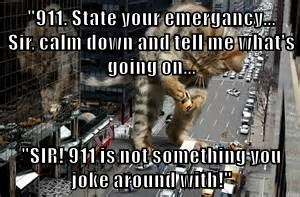 """""""911. State your emergancy...               Sir, calm down and tell me what's going on...  """"SIR! 911 is not something you joke around with!"""""""