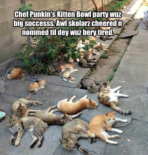Kitten Bowl III party