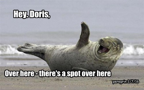 Hey. Doris,