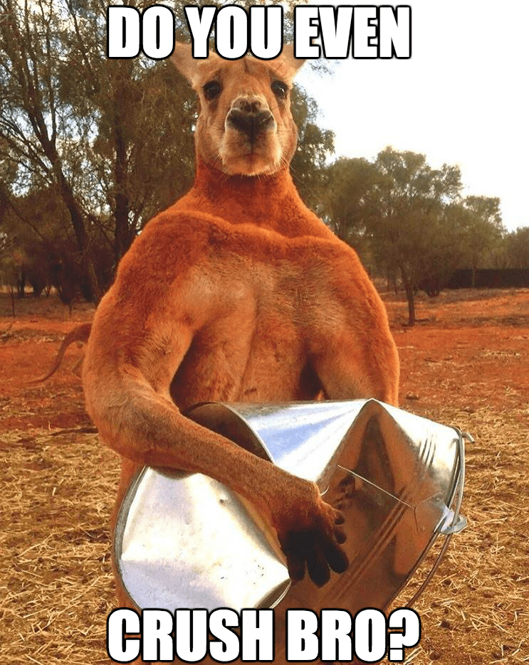 do you even lift buff kangaroo - 8749158656