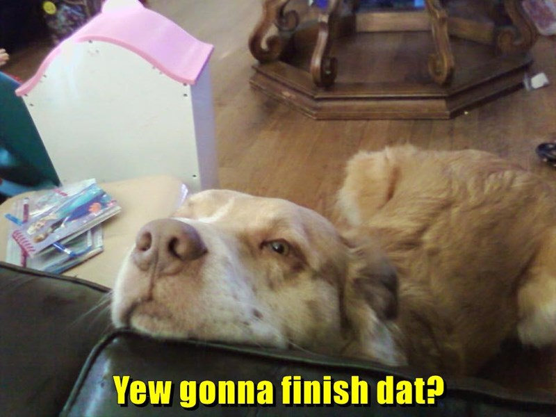 you,dogs,that,finish,caption,going
