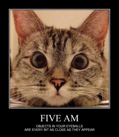 FIVE AM