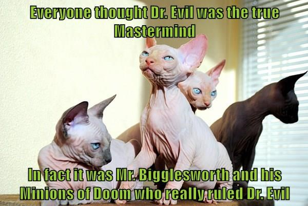 Everyone thought Dr. Evil was the true Mastermind  In fact it was Mr. Bigglesworth and his Minions of Doom who really ruled Dr. Evil