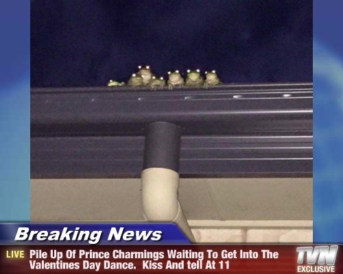 Breaking News - Pile Up Of Prince Charmings Waiting To Get Into The Valentines Day Dance.  Kiss And tell At 11