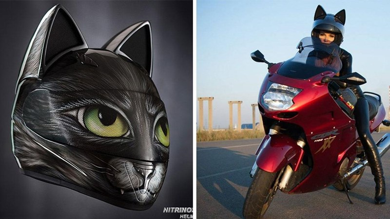 awesome cat motorcycle helmet